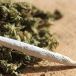 Los efectos adversos del cannabis: accidentes de tráfico, psicosis…